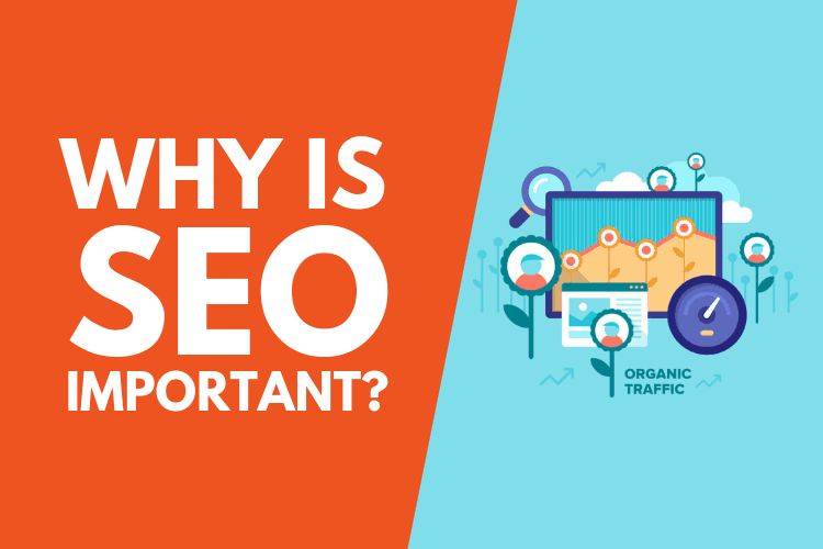 Why is SEO Important for your Website?
